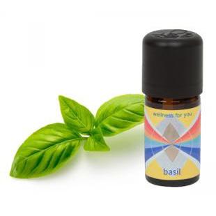 Basilikum - Ocimum basilicum - ätherisches Öl