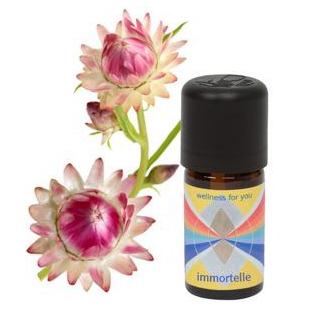 Immortelle - Helichrysum angustifolium