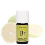 bergamot - citrus bergamia